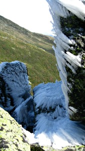 Mount Washington3